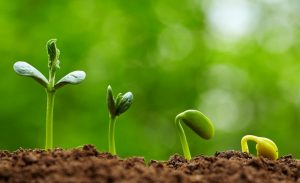 prayer-points-for-church-growth